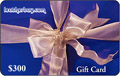 $300 Electronic Gift Card